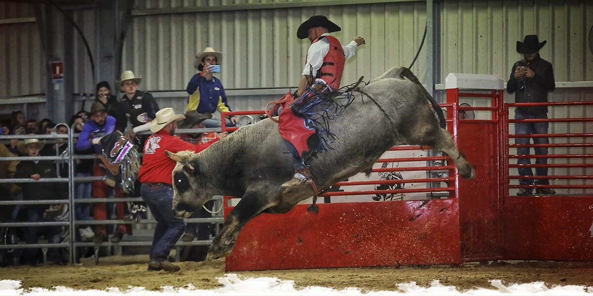 "Du ""bull riding"" à Cheval Passion"
