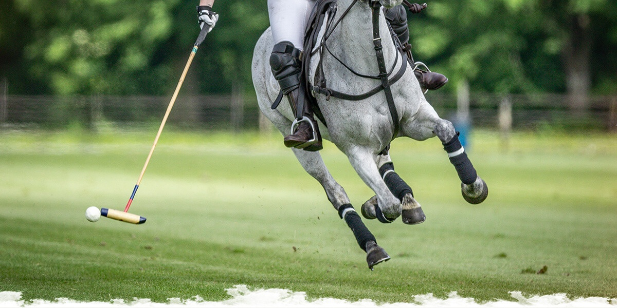 Grande finale de polo à Chantilly