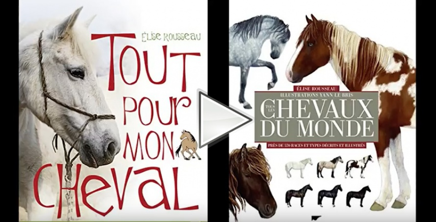 Interview d'Elise Rousseau @Blog Cheval d'Aventure