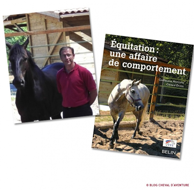 Equitation : une affaire de comportement @Blog Cheval d'Aventure