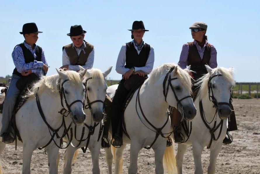 Site rencontres équitation