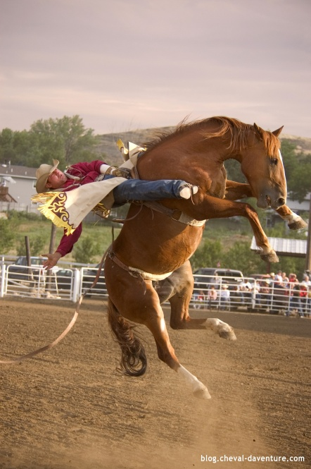 Epreuve de Bronc Riding @Blog Cheval d'Aventure